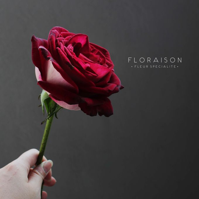 single stem by Floraison - 001
