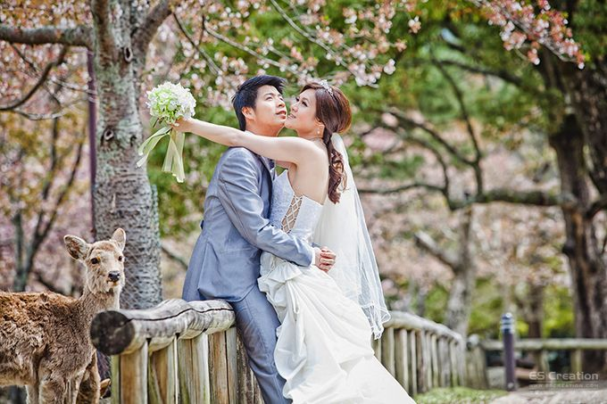 Pre wedding in Japan by ES Creation Photography - 009