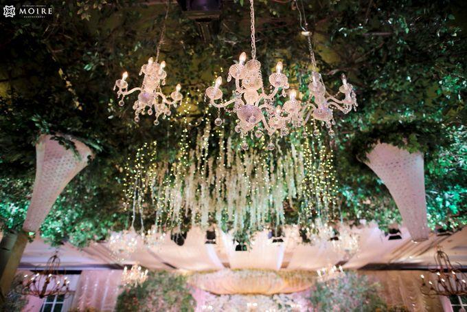 Glam Garden by STEVE'S DECOR - 007
