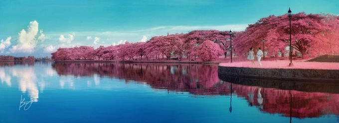 Infrared Photography by Bogs Ignacio Signature Gallery - 018