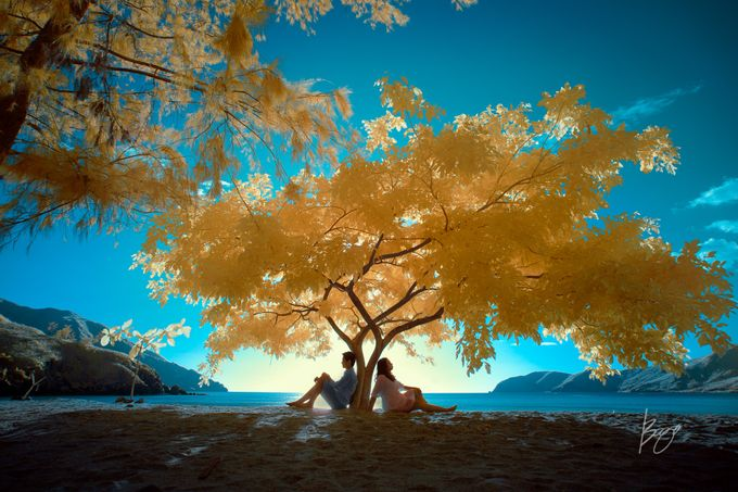 Infrared Photography by Bogs Ignacio Signature Gallery - 042