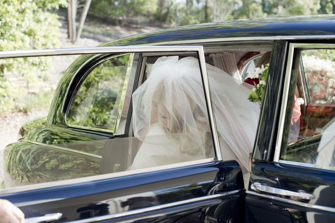 Classic Daimler major Magestic Wedding Car by Tic Tac Tours & Premier Limousines - 009