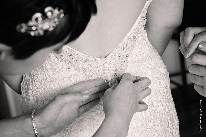 OReillys Rainforest Retreat Wedding by Ben Clark Photography - 005