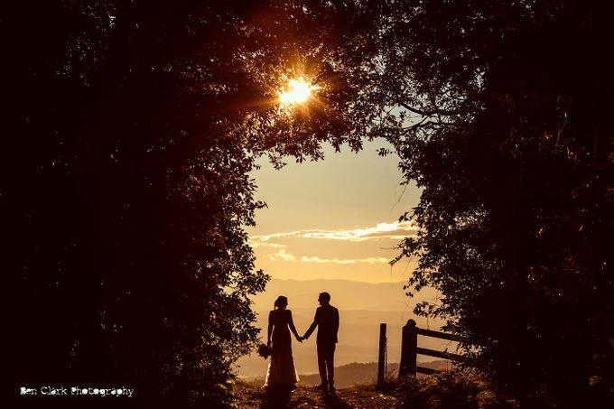 OReillys Rainforest Retreat Wedding by Ben Clark Photography - 026