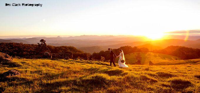 OReillys Rainforest Retreat Wedding by Ben Clark Photography - 038