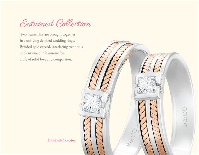 Wedding Ring Collection by Frank & co. - 010