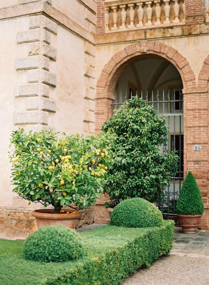 Srping Villa Cetinale Engagement Shoot by Jen Huang Photo - 003