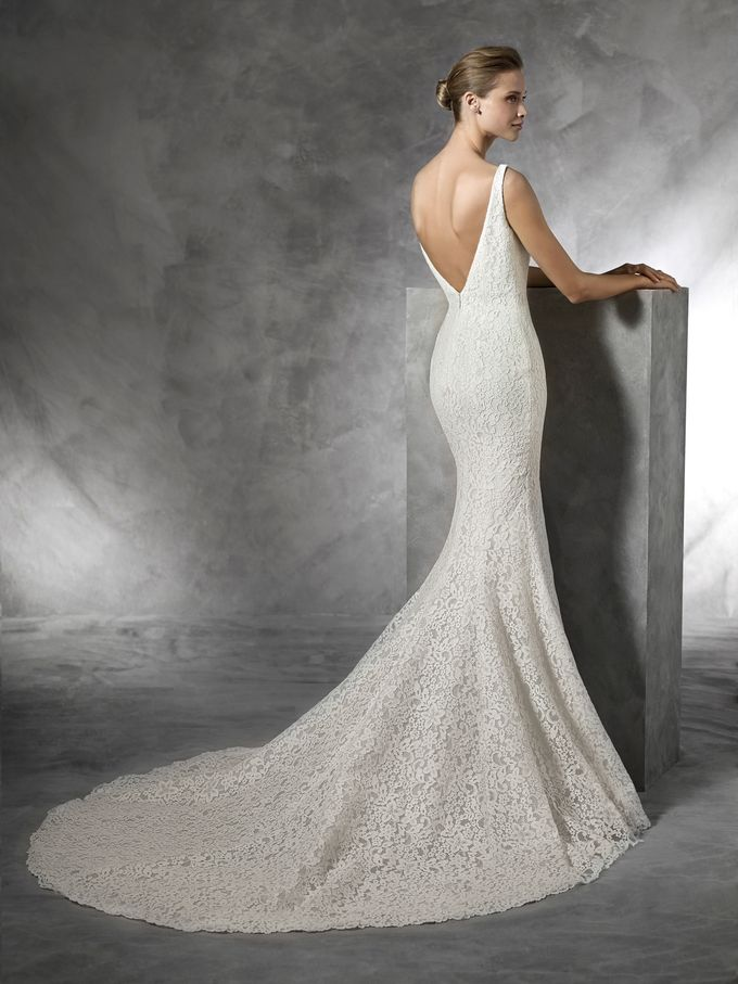 Pronovias by DESIGNER BRIDAL ROOM - 004