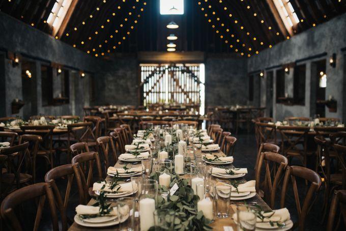 Benj & Madilyn's Rustic Blue Ridge Mountain Wedding by Nicola Harger Photography - 025