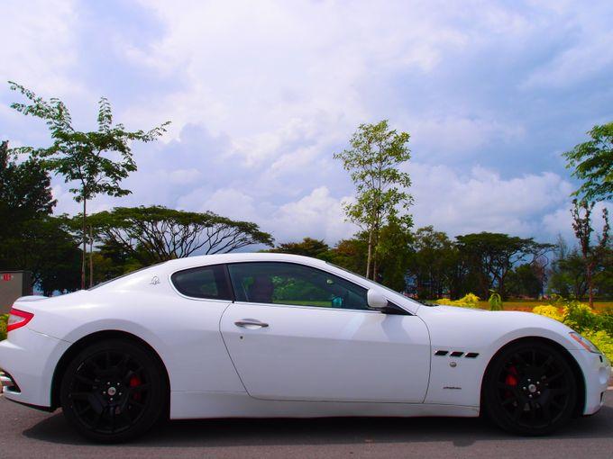 Wedding Car Rentals by WhiteWedding Cars - 009