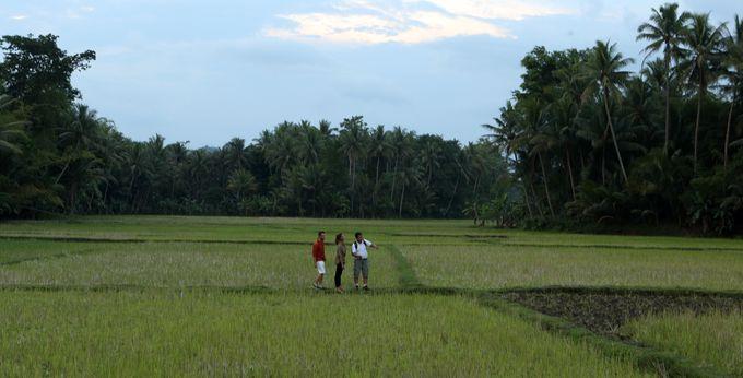 Plataran Borobudur Resort and Spa by Plataran Indonesia - 019