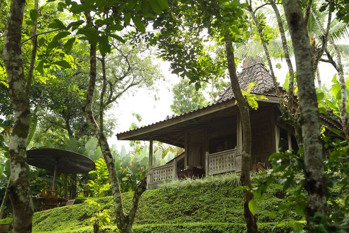 Plataran Borobudur Resort and Spa by Plataran Indonesia - 020