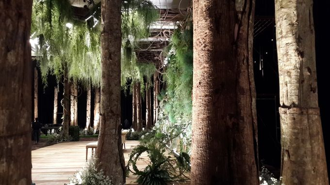Midnight Forest by PARC De AYODYA - 005