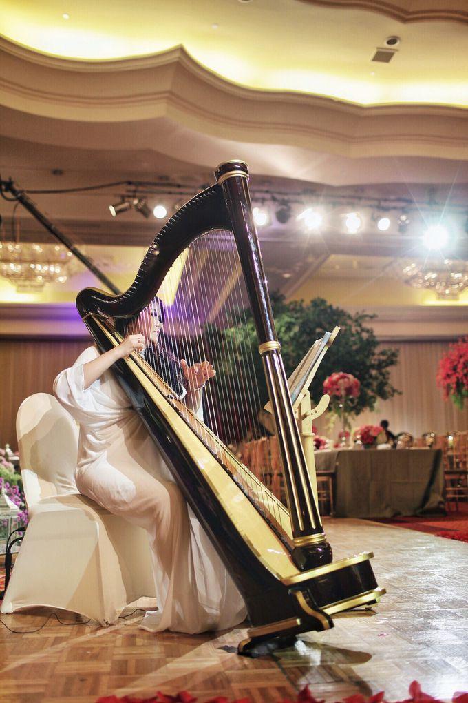 BEBOP Mini Orchestra & Modern Dance by BEBOP Entertainment - 001