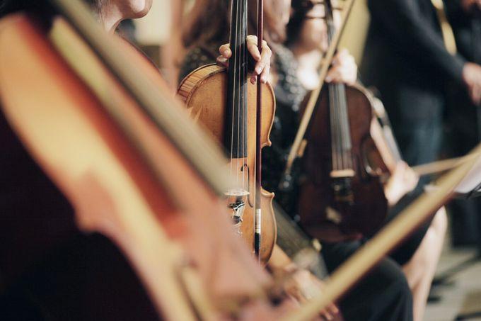 BEBOP Mini Orchestra & Modern Dance by BEBOP Entertainment - 006