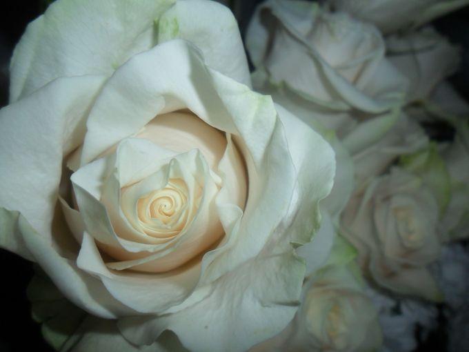 Romantic country chic wedding by Sogni Confettati - 045
