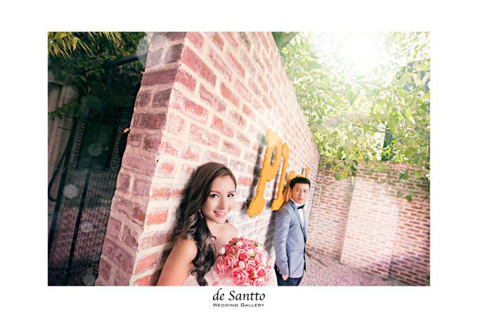 JUNE WEDDING PHOTOGRAPHY by DE SANTTO WEDDING GALLERY - 005