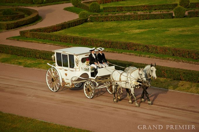 Wedding in the Peterhof and Konstantinovsky Palace by Grand Premier - 028