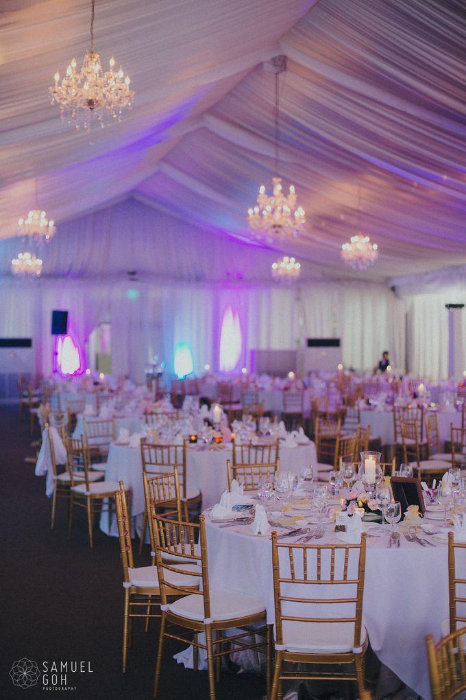 Wedding of Derek & Fiona by Rosette Designs & Co - 018