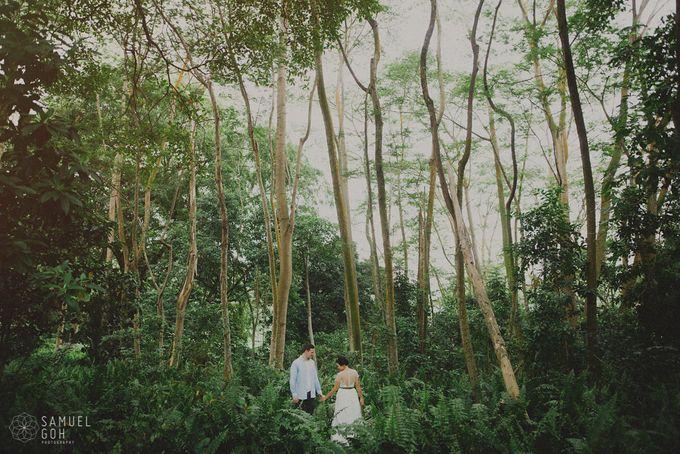CAROLYN & FELIX by Samuel Goh Photography - 001