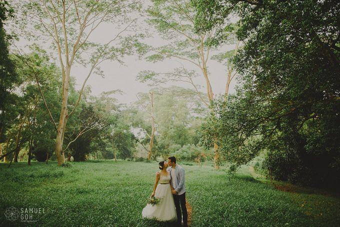 CAROLYN & FELIX by Samuel Goh Photography - 019