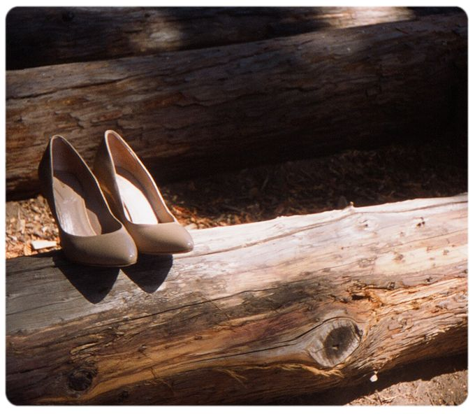 Wedding in the forest of the Santa Cruz Mountains by Stereo Photo Album - 003
