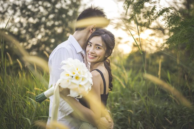 Brandon and Simin by Shane Chua Photography - 003