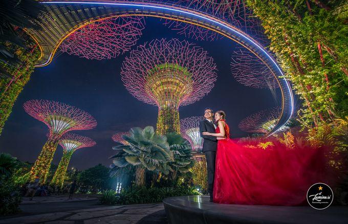 Singapore Wedding 2018 Part 2 by The Luminari - 018