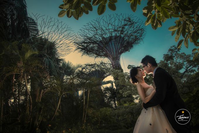 Singapore Wedding 2018 Part 2 by The Luminari - 046