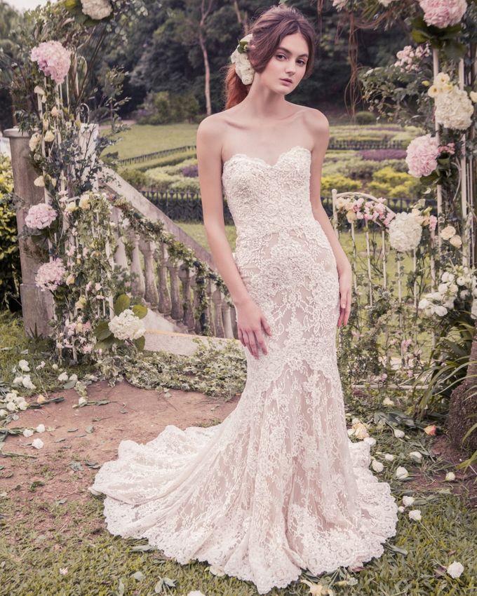 Annasul Y by DESIGNER BRIDAL ROOM Bridestorycom