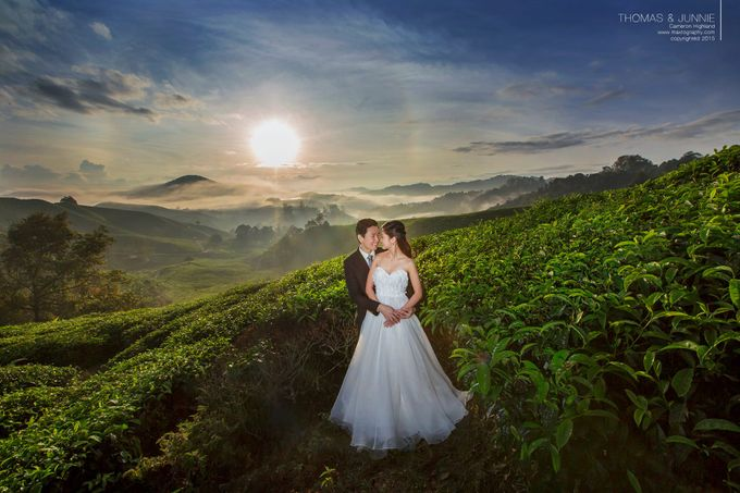 The best of  Pre-Wedding in Cameron Highland by maxtography - 037