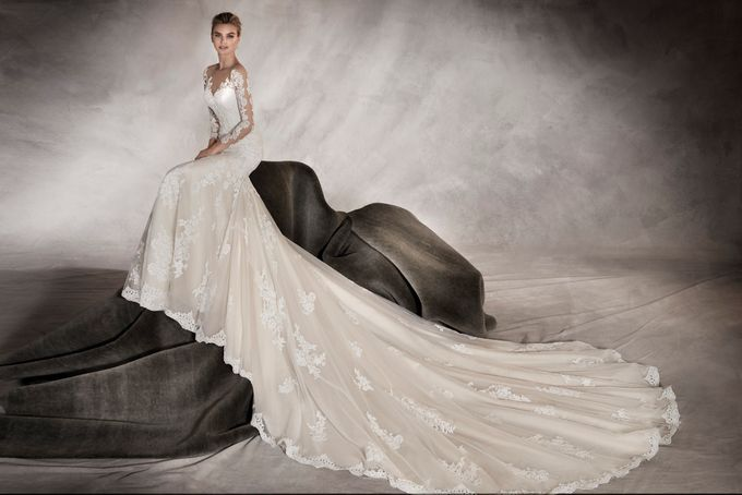 Pronovias by DESIGNER BRIDAL ROOM - 006