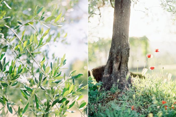 A rustic Tuscan wedding by Caught the Light - 012