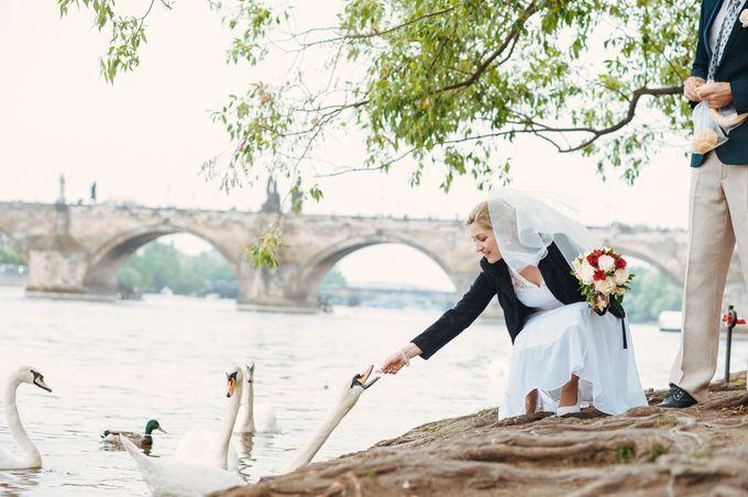Weddings by Lubow Polyanska - 039