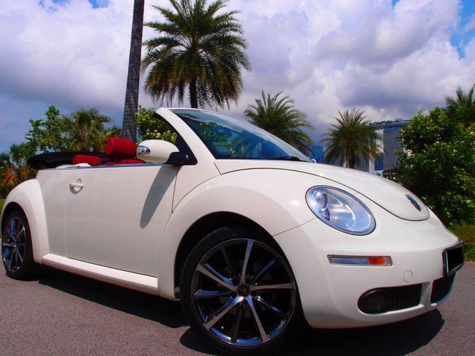 Wedding Car Rentals by WhiteWedding Cars - 011