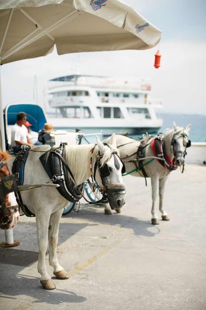 A wedding in Greece by Sotiris Tsakanikas Photography - 001