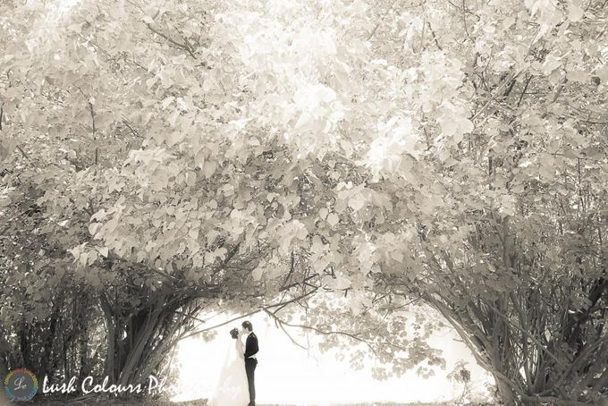 Singapore Pre Wedding Photography for Chongyou & Kai Ling by Lush Colours Photography - 016