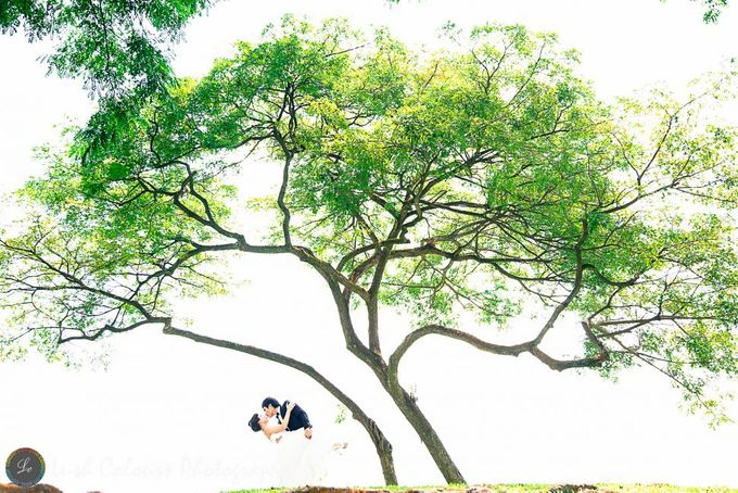 Singapore Pre Wedding Photography for Chongyou & Kai Ling by Lush Colours Photography - 017