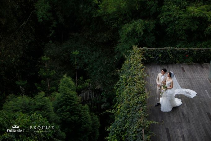 Exquise Gowns for Padma Bandung Wedding Video Project by Exquise Gowns - 005