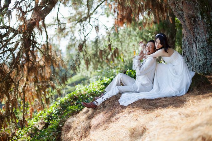 The best of  Pre-Wedding in Cameron Highland by maxtography - 042