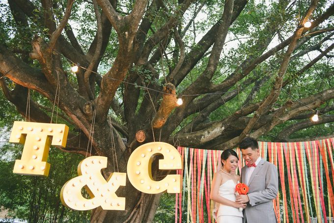 Carnival themed wedding by bliss & glitz - 005