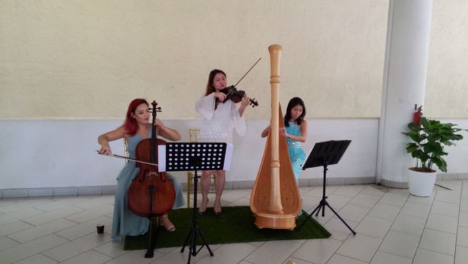 Harp Trio at the Church Wedding of  Samantha & Arvind by Merry Bees Live Music - 004