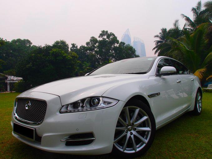 Wedding Car Rentals by WhiteWedding Cars - 008