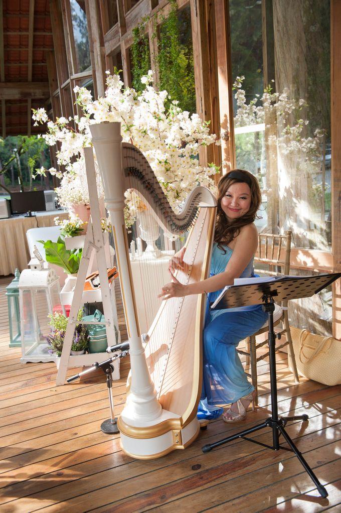 Weddings by Elysium Weddings by Elysium Weddings Sdn Bhd - 020