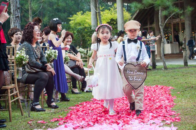 Weddings by Elysium Weddings by Elysium Weddings Sdn Bhd - 021