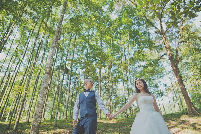 Pre-wedding Shoot YM & YL by ABSOLUTE BRIDE - 003
