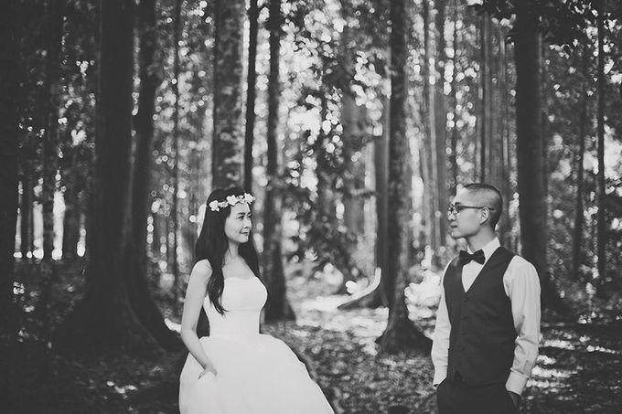 Pre-wedding Shoot YM & YL by ABSOLUTE BRIDE - 004