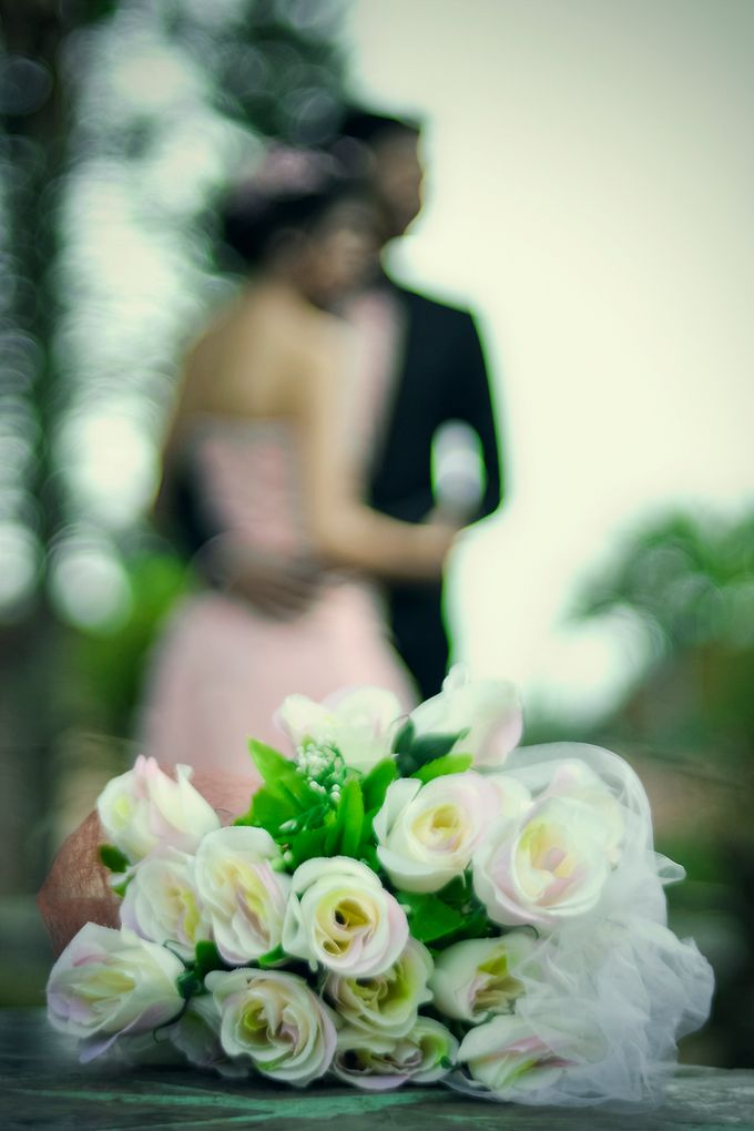 Color of Harmony Preweding by Creative by dre - 001