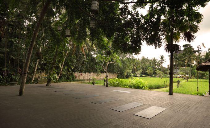 Plataran Ubud Hotel and Spa by Plataran Indonesia - 034