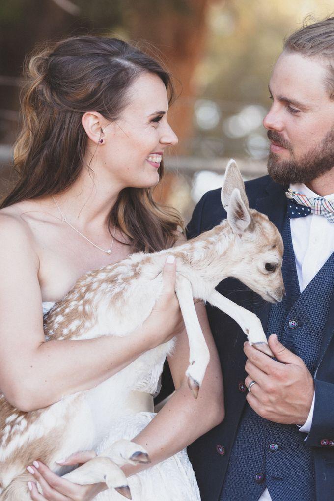 Wedding photography portfolio by Bri Hammond Photography - 003